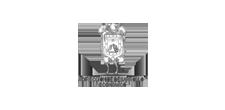 presentan, patrocinadores, direccion desarrollo economico, docsxalapa, 2019