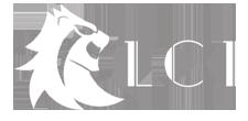 patrocinadores, aliados, lci, docsmx, 2019