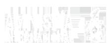 patrocinadores, colaboran, amnistia internacional, docsmx, 2020